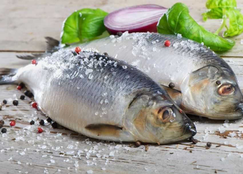Выбор рыбы при сахарном диабете