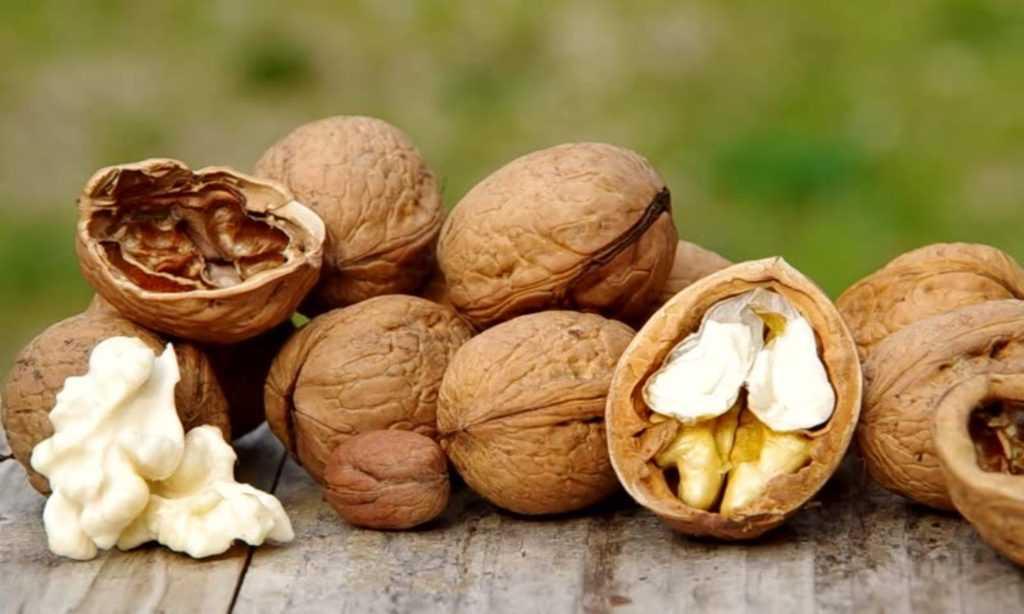 Лучшие орехи при сахарном диабете