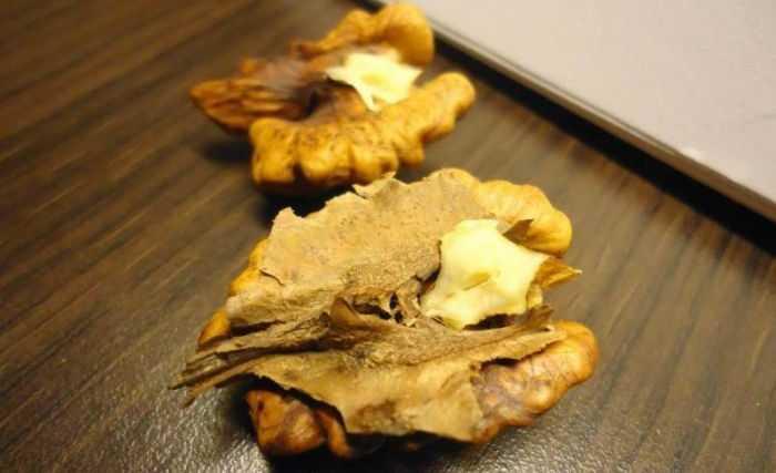 Состав перегородок грецких орехов