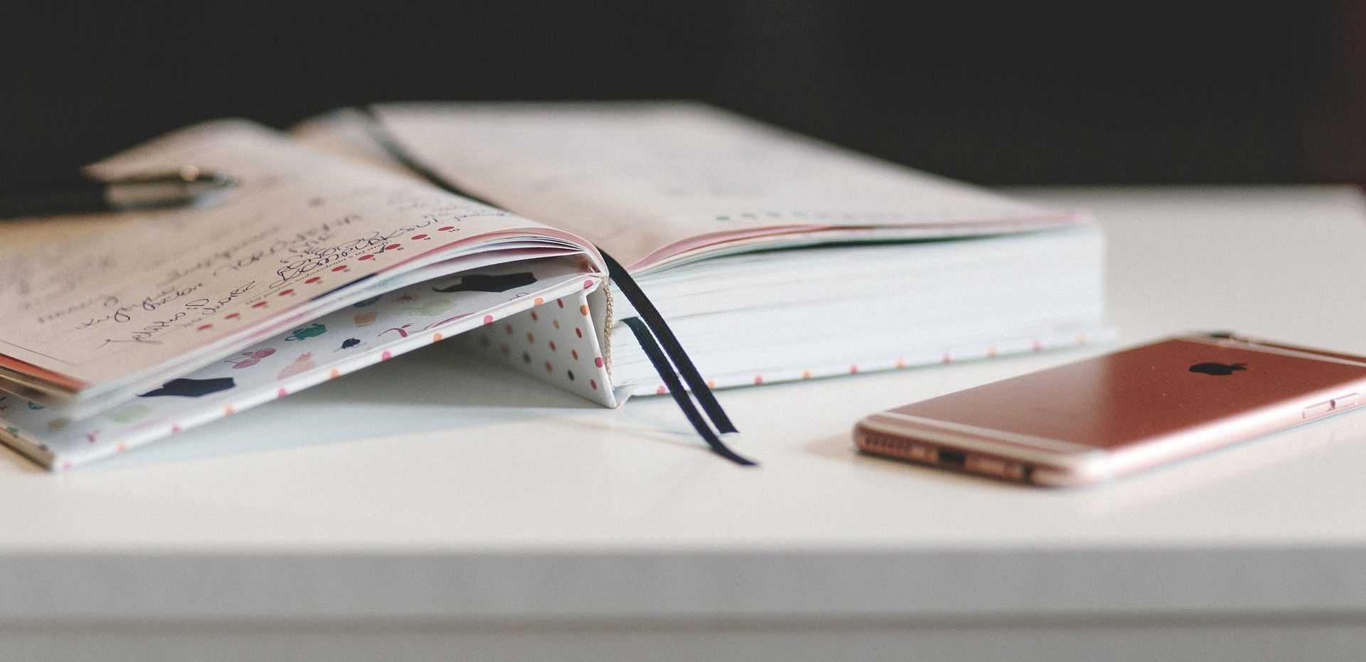 мобильный и бумажный дневники