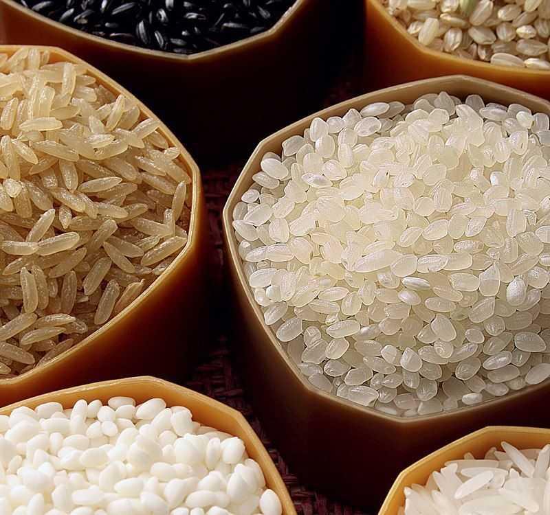 Несомненная польза риса