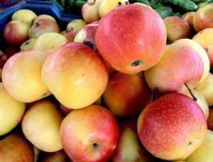 Яблоки при сахарном диабете 2 типа
