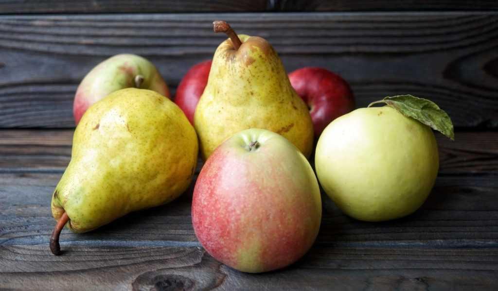 яблоки груши