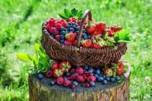 Какие ягоды можно есть при диабете