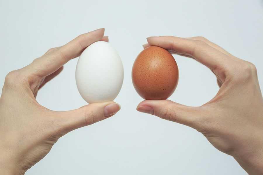 Употребление яиц при диабете